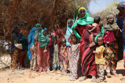 UJETA Help! Somaliland